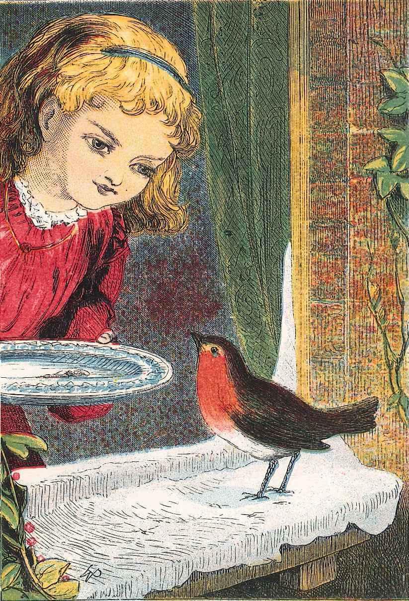 Girl feeding robin