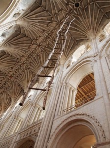 The ladder in Norwich Cathedral.