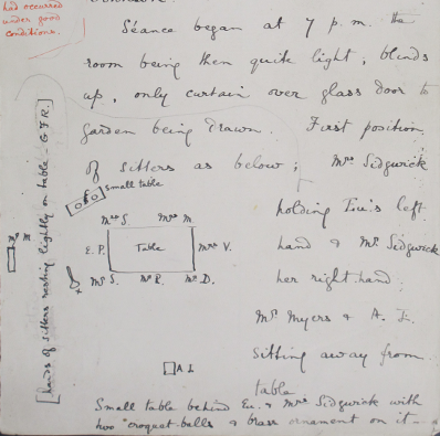 Miss Johnson's notes of the séance.