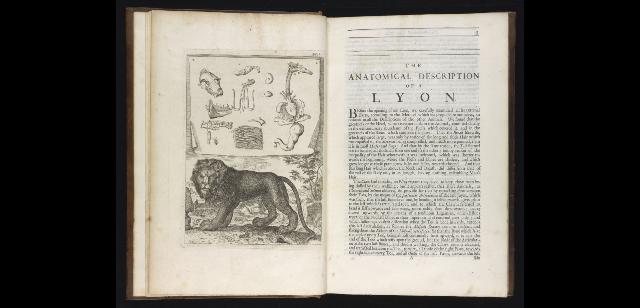 M.14.41, pp. 2–3 (Royal Library)