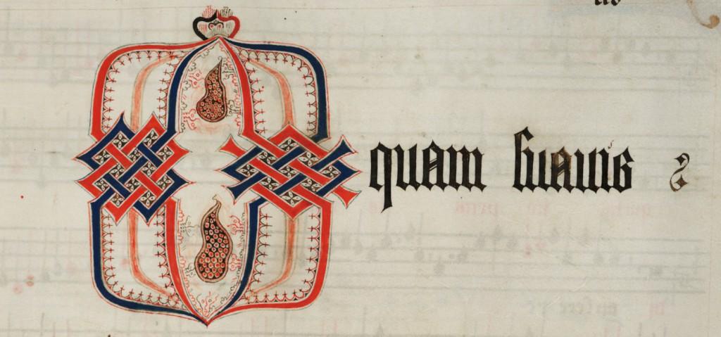 MS Nn.6.46, f. 14r