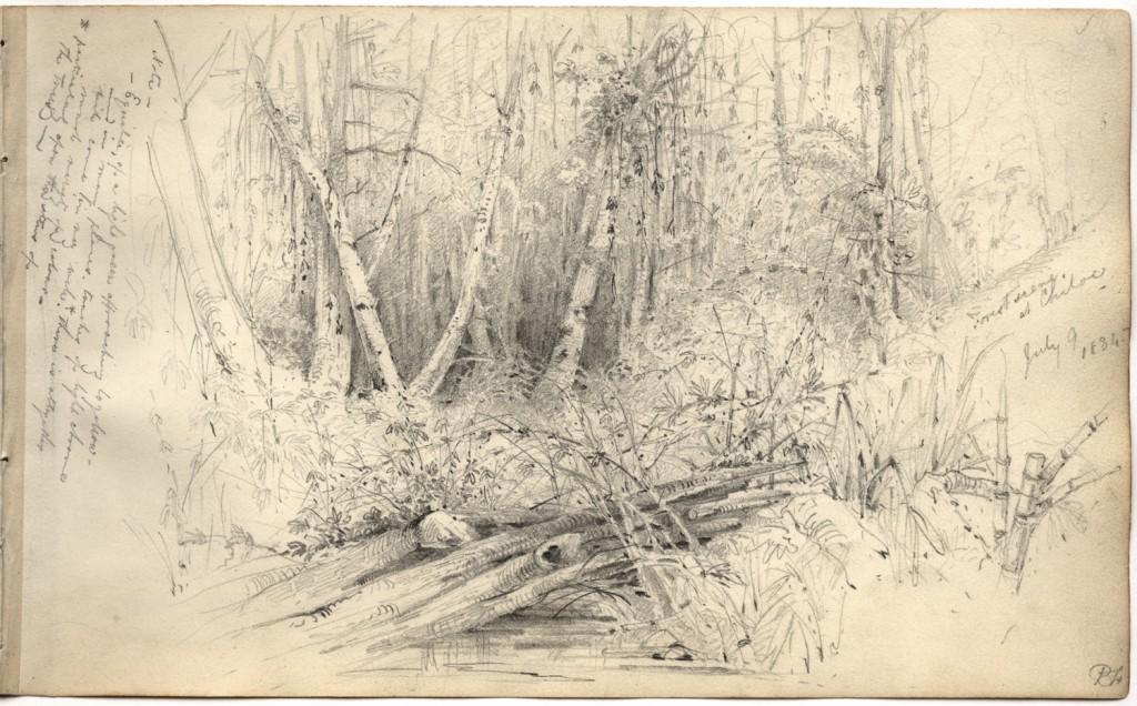 MS Add. 7984, f. 29r